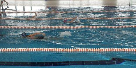 Yüzme Federasyonu'na soruşturma