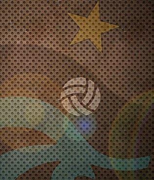 Trabzonspor'da Avrupa üzüntüsü