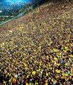 Alman futbolunda devrim gibi karar